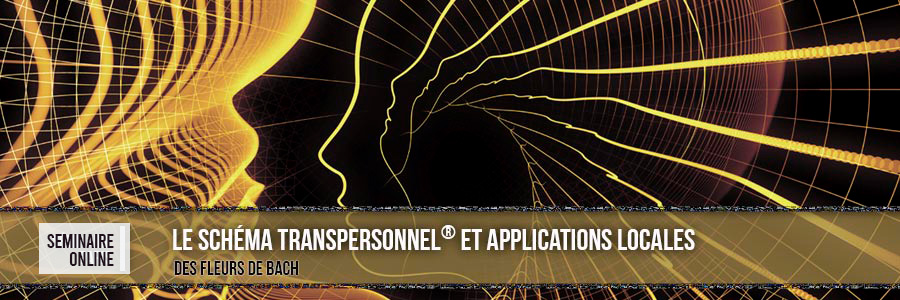 Le Schéma Transpersonnel® et Applications Locales. France